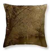 Where The Otters Play Throw Pillow