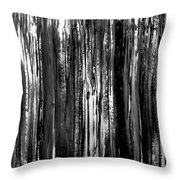 Luminosity Secrets Throw Pillow