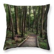 Where The Sidewalk Ends Throw Pillow