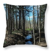 Where The White Tail Deer Run Throw Pillow