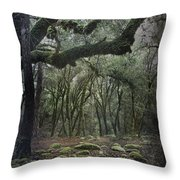 Where The Wild Hearts Roam Throw Pillow