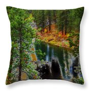 Where We All Belong Throw Pillow