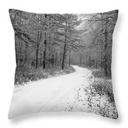 Where Will It Lead Throw Pillow