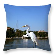 Where's Lunch Throw Pillow
