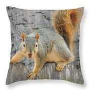Where's The Nuts? Throw Pillow
