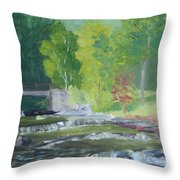 Whetstone Gulf State Park Ny Stream Throw Pillow