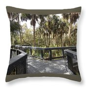 Which Way ?  Throw Pillow