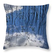 Which Way Is Up Throw Pillow
