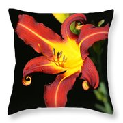 Whimsical Daylily Throw Pillow