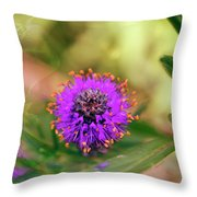 Whimsical Nature Throw Pillow