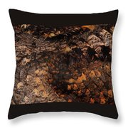 Whip-poor-will Feathers Throw Pillow