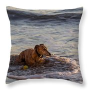 Whippet Cooling Off Throw Pillow