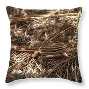Whiptail Lizard Throw Pillow