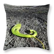 Whirly-gigs On The Path Throw Pillow