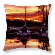 Whiskey At Sunrise Throw Pillow