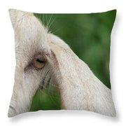 Whisper It In My Ear Throw Pillow