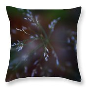 Whispered Dreams Throw Pillow