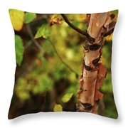Whispered Thoughts Throw Pillow