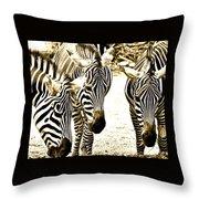 Whispering Zebras Throw Pillow