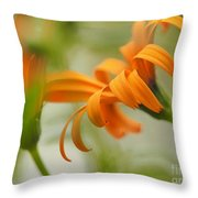 Whispers Of Orange Symphony Throw Pillow