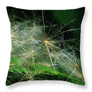 Whispy Seeds Throw Pillow
