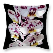 White And Magenta Orchids Throw Pillow