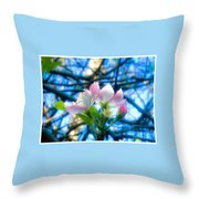 White And Pink Apple Blossoms Against A Blue Sky Throw Pillow