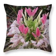 White And Pink Flower Throw Pillow