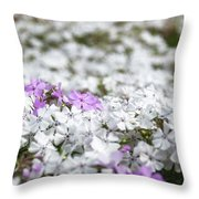 White And Pink Flowers At Botanic Garden In Blue Mountains Throw Pillow