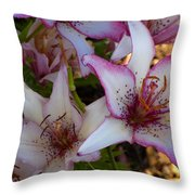 White And Pink Lilies Throw Pillow