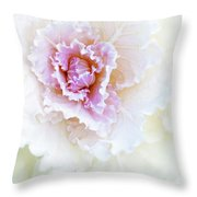 White And Pink Ornamental Kale Throw Pillow
