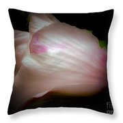 White And Pink Rose Of Sharon Throw Pillow