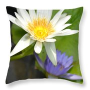 White And Purple Lotus Flowers At Golden Mount Throw Pillow