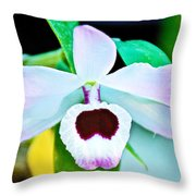 White And Purple Orchid In Greenhouse At Pilgrim Place In Claremont-california Throw Pillow
