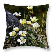 White And Yellow Poppies 1 Throw Pillow