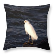 White As Snow Throw Pillow