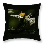 White Aster Throw Pillow