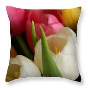 White Balance In Spring Throw Pillow