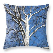 White Bark Throw Pillow