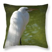 White Beauty Of The Marsh Throw Pillow