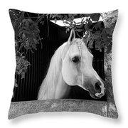 White Beauty - Series #5 Throw Pillow