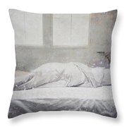 White Bed Sheet- Warmth Throw Pillow