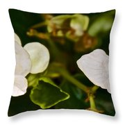 White Begonias At Pilgrim Place In Claremont-california Throw Pillow