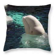 White Beluga Whale 1 Throw Pillow