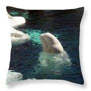 White Beluga Whale 3 Throw Pillow