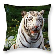 White Bengal Tiger  Throw Pillow by Garry Gay