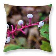 White Berries - Kettle Moraine 10-14-16 Throw Pillow