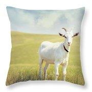 White Billy Goat Throw Pillow