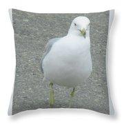 White Bird Of Alberta Throw Pillow