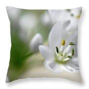 White Blossom 2 Throw Pillow